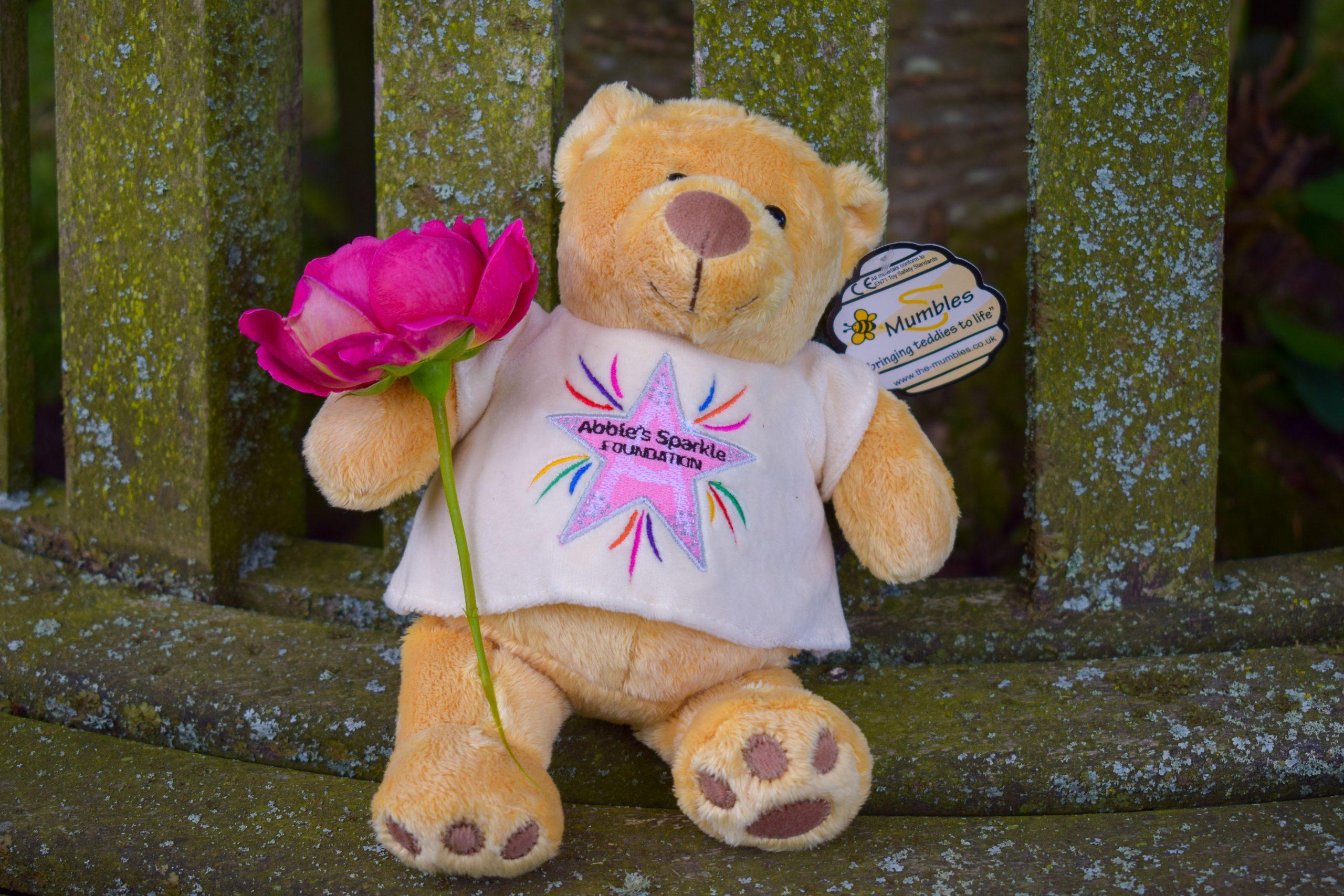 Abbies Sparkle Minnie bear